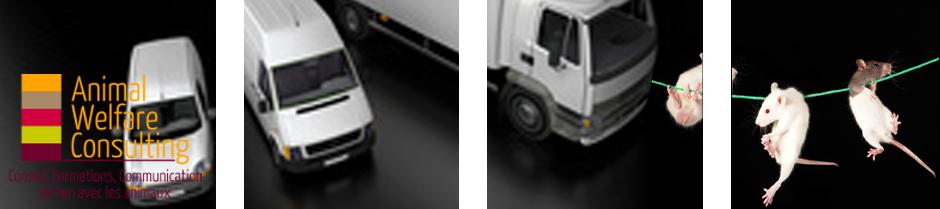 Header Transports